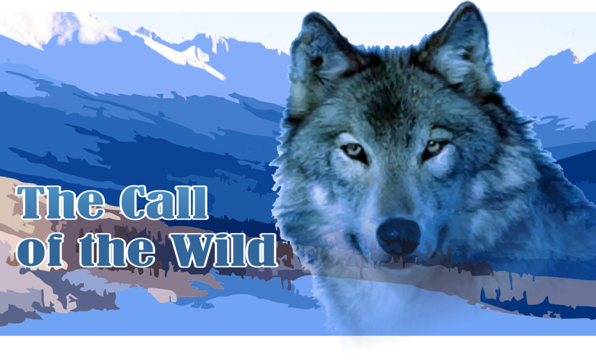 "Jack London's Call of the Wild transports readers to the 1890s Klondike Gold Rush, where sled dogs are in high demand. Image from <a href=""https://myfavoritewesterns.files.wordpress.com/2014/01/the-call-of-the-wild.png""><span class=""s1"">myfavoritewesterns.com</span></a><span class=""s2"">."